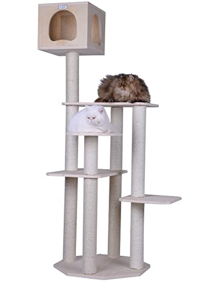 Well-known Amazon.com : Armarkat S6905 Premium Solid Wood Cat Tree Tower, 69  QT26
