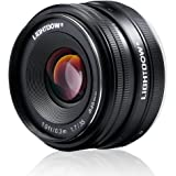 Lightdow 35mm F1.7 APS-C E-mount Prime Lens for Sony Mirrorless Camera: Alpha A5000 A5100 A6000 A6300 NEX-3 NEX-3N NEX-5 NEX-5T NEX-5R NEX-6