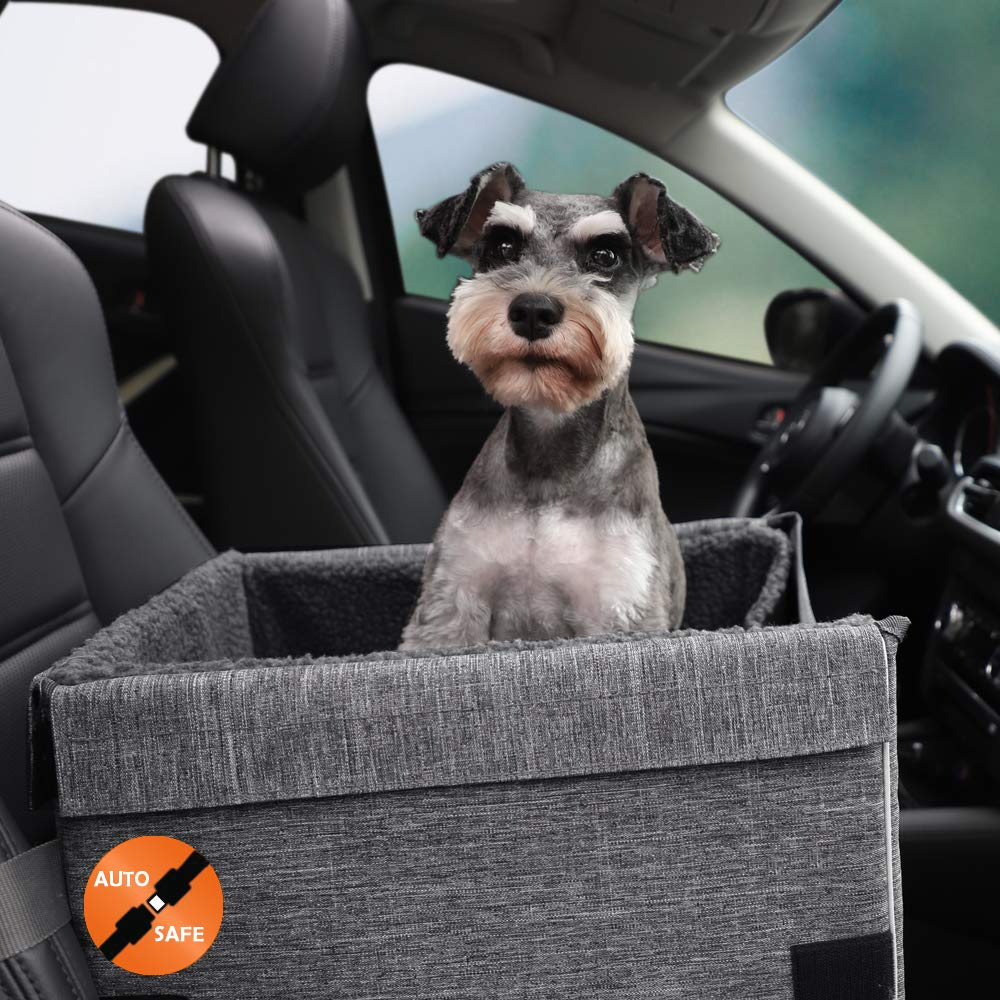 petisfam Dog Booster Car Seat for Small Dogs by petisfam