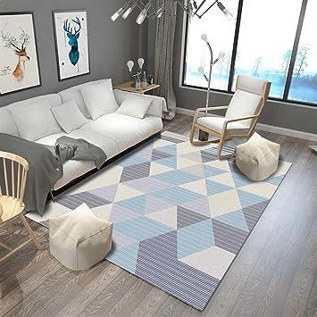 Insun Tapis de Salon Chambre Scandinave Design Tapis Déco Rectangle  Antidérapant Lavable Style 4 80x160cm