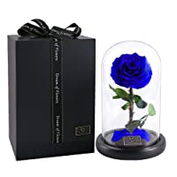 Rose Flowers, Forever Flowers, Glamorous Rose Glass, Roses in Glass Dome Wood Base, Family Holiday Party Valentine's Day Creative Gifts, Wedding Gifts, Best Gifts Her
