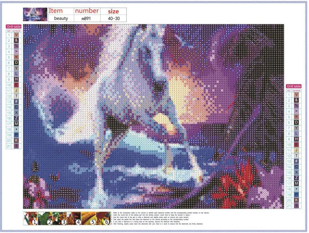 Crystal Rhinestone Embroidery Cross Stitch Arts Craft Canvas Wall Decor 11.81x15.74 Inch DIY 5D Diamond Painting by Number Kit