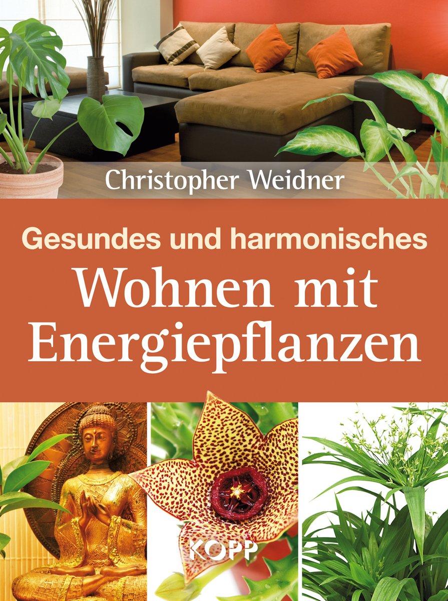 Gesundes und harmonisches Wohnen mit Energiepflanzen