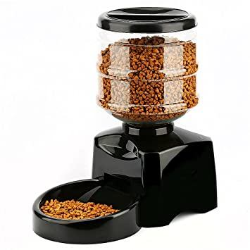 stuff feeder misc automatic pintofeed pet gadgets feeders technology