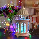 ECOWHO Battery Operated String Lights, Outdoor