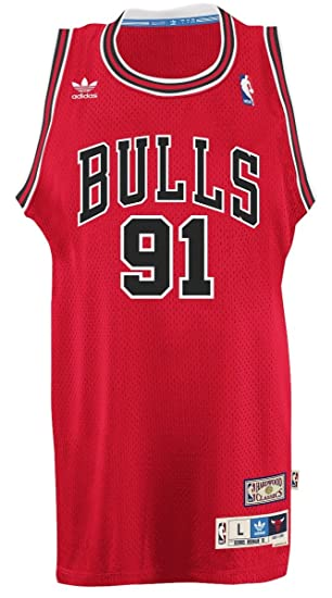 quality design 2f1f8 2be36 Amazon.com : adidas Chicago Bulls #91 Dennis Rodman NBA Soul ...
