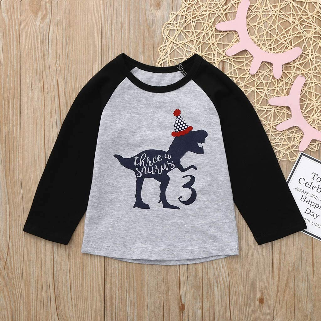 Toddler Kids Baby Boy Girl Dinosaur Birthday Shirt Cartoon Tee Tops Outfits for Baby Girls