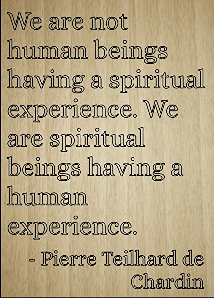 Amazoncom We Are Not Human Beings Having A Quote By Pierre