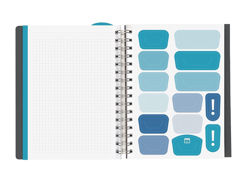 Amazon.com : Finocam Magistral Teacher - Agenda 2018 - 2019 ...