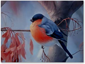 imobaby Oil Painting on Canvas Fatty Bullfinch Bird Prints with Wooden Frame for Bedroom Home Living Room Office Modern Wall Art Decor, 11.8x15.7 in