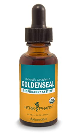 Herb Pharm Certified Organic Goldenseal Liquid Extract for Respiratory System Support – 1 Ounce