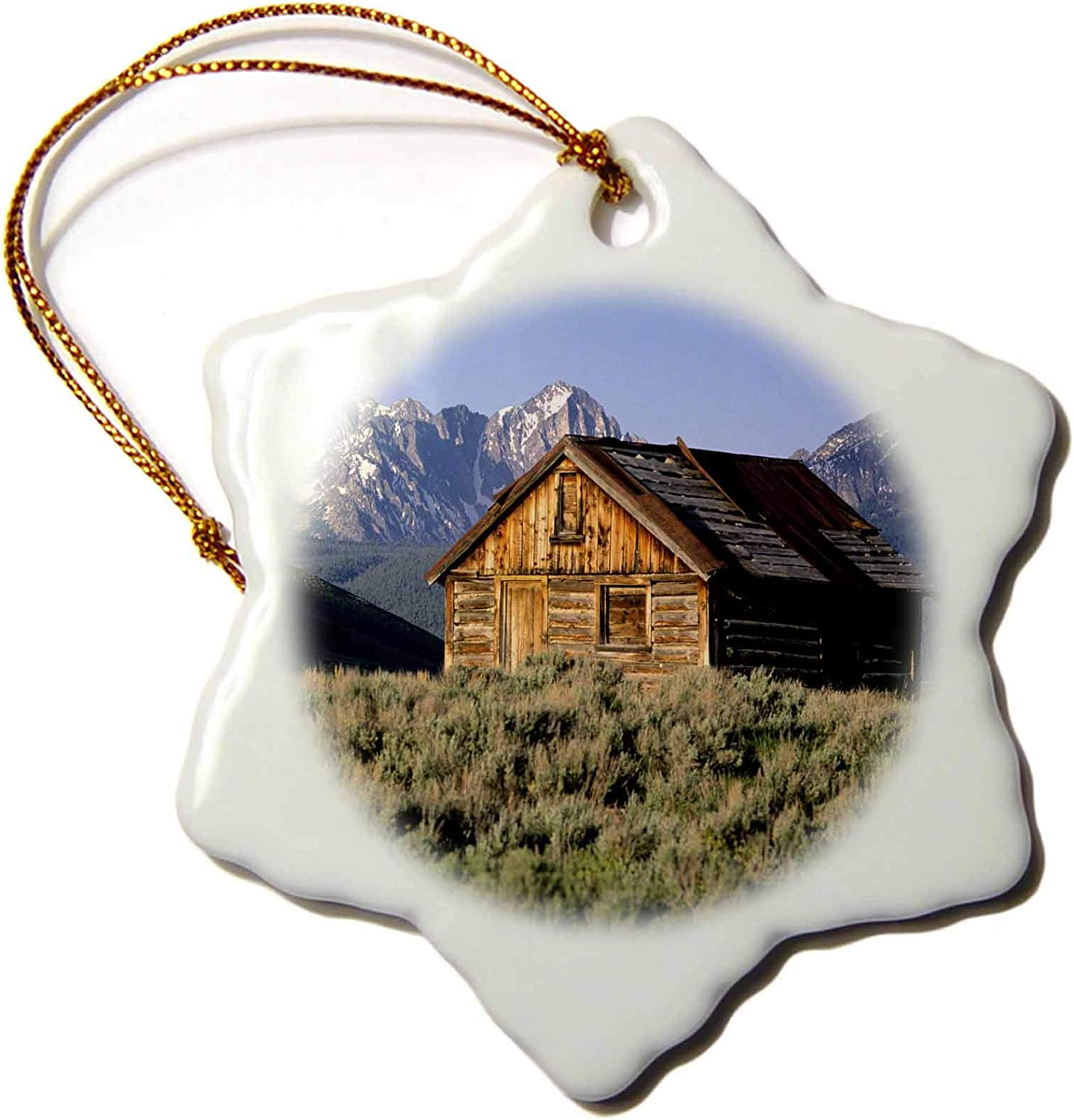 3dRose Log Cabin and Sawtooth Mountains, Stanley, Idaho - US13 DFR0406 -. - Ornaments (ORN_90004_1)