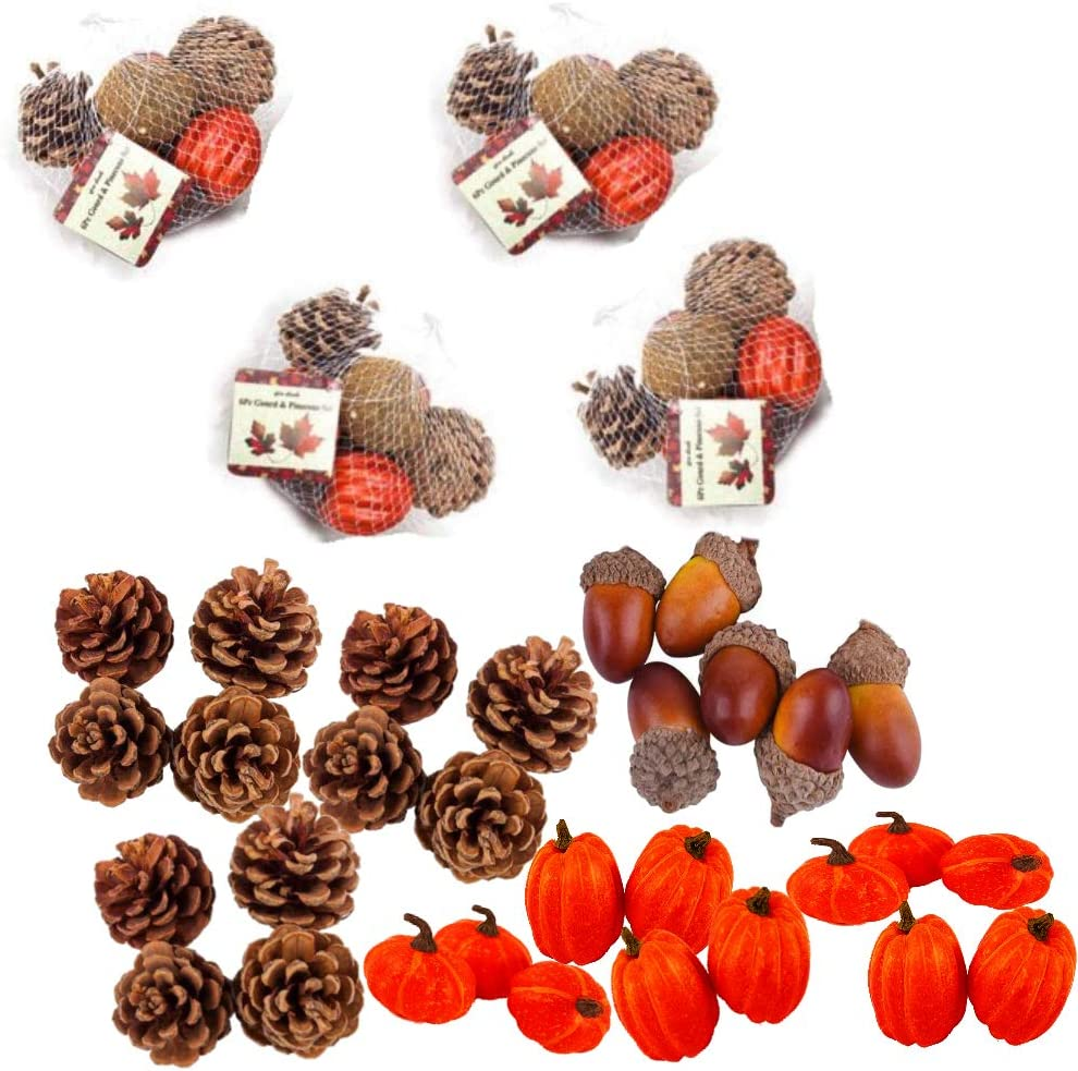 Family Holiday Artificial Autumn Gourds, Pumpkins and Pine Cones Fall Harvest Decorating Kit