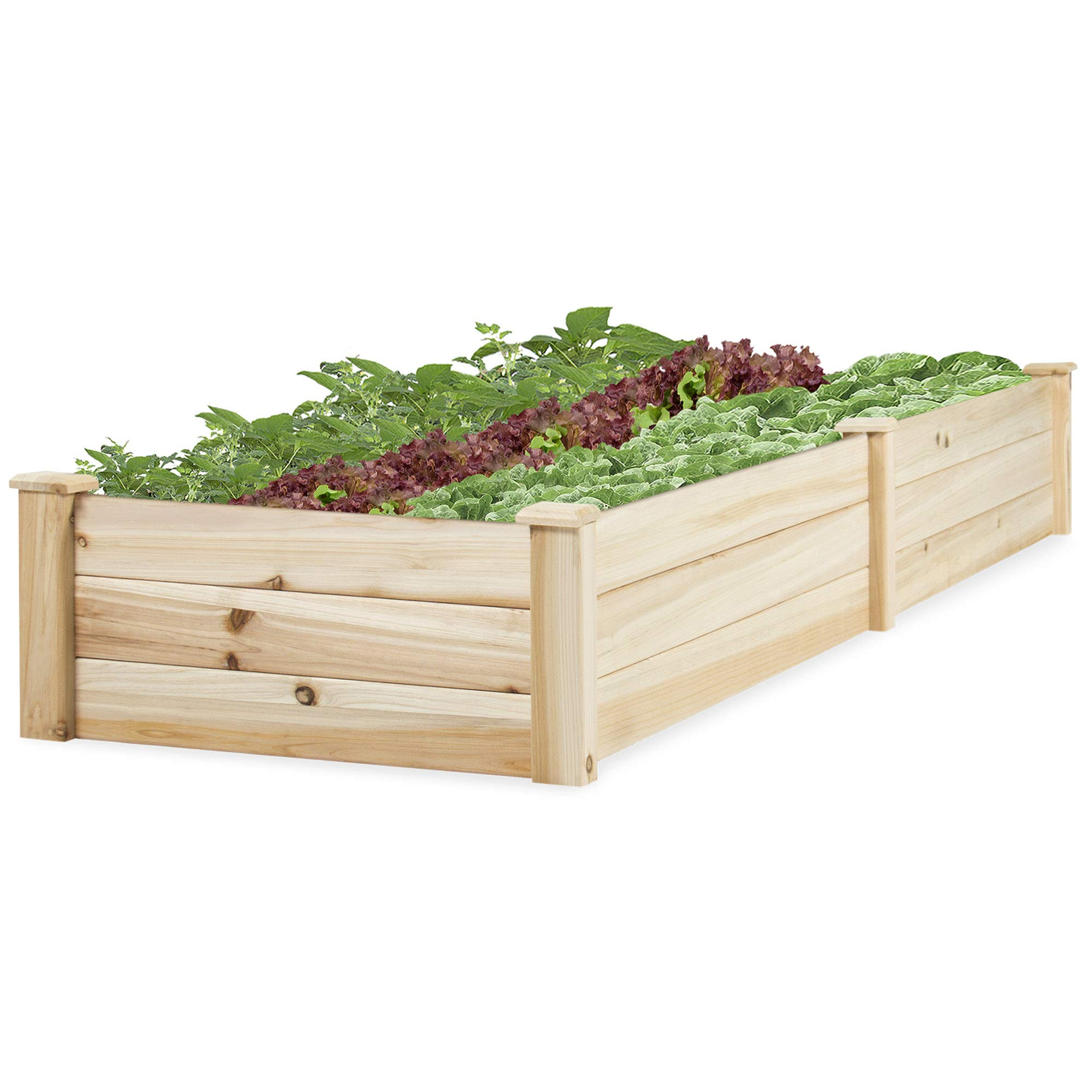 Best Choice Products 8x2ft OutdoorElevated Wooden Gardening Bed Planter Box for Garden, Lawn, Yard - Natural Chinese Fir Wood