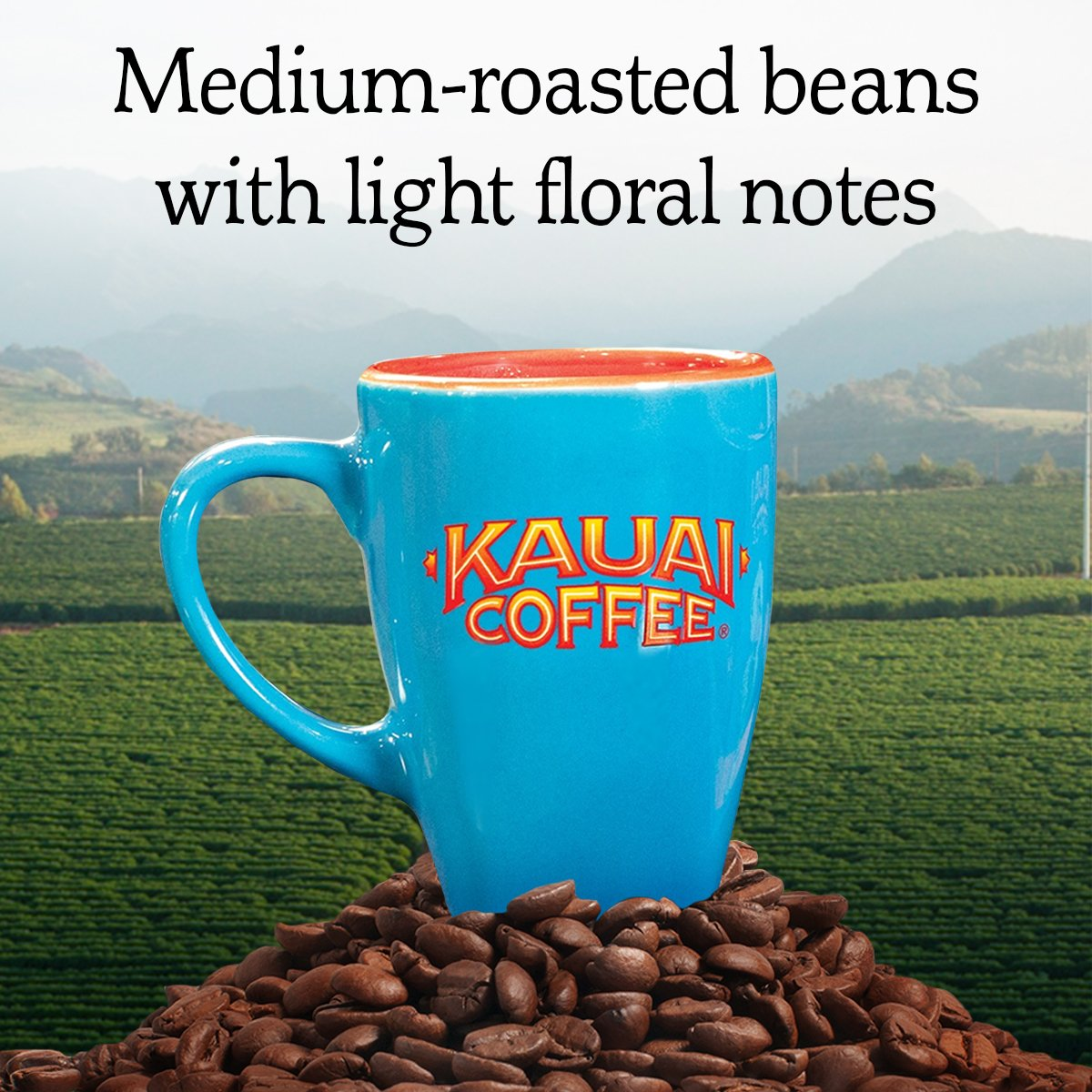 100% Kauai Whole Bean Coffee, Koloa Estate Medium Roast – 100% Premium Arabica Whole Bean Coffee from Hawaii's Largest Coffee Grower - Bright Aroma with Light Floral Notes (32 Ounces) by Kauai (Image #2)