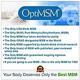 Kala Health MSMPure Fine Powder, Fast Dissolving