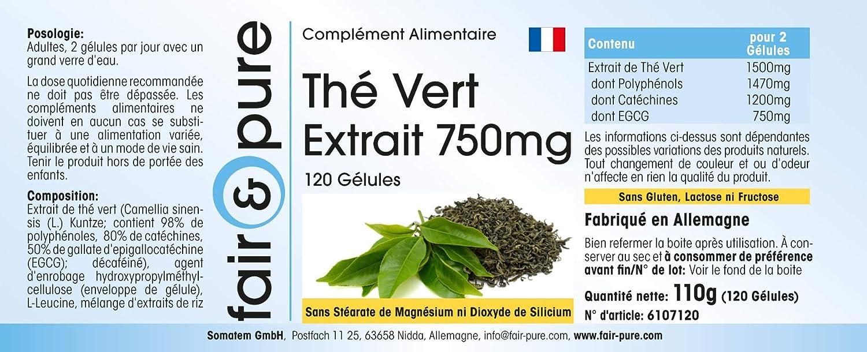 Té verde en cápsulas - Extracto de té verde descafeinado 750mg - Vegano - 120 Cápsulas: Amazon.es: Salud y cuidado personal