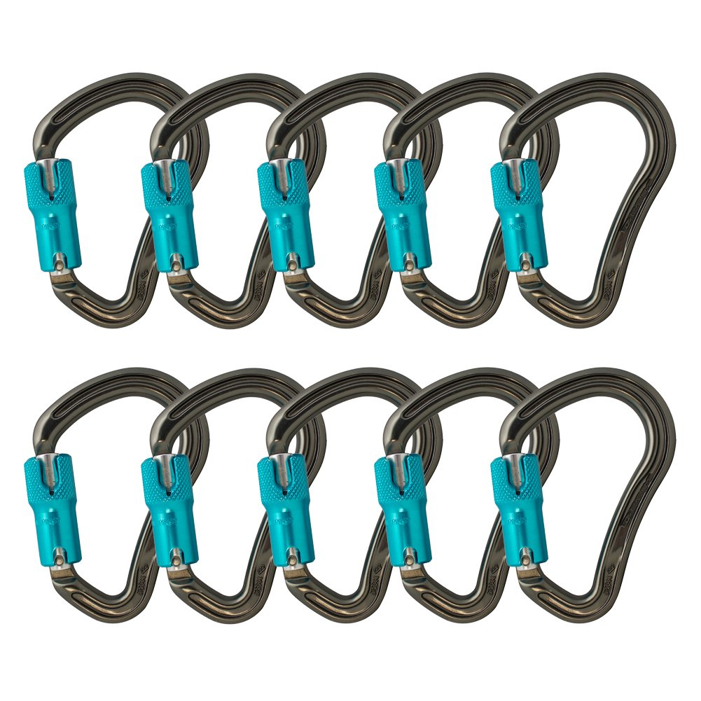 Fusion Climb Techno Groove Auto Lock High Strength Ergonomic Carabiner 10-Pack