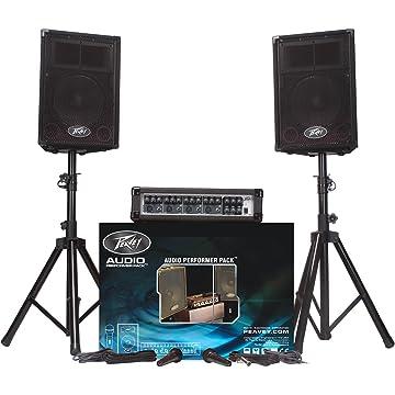 reliable Peavey APP Audio Performer
