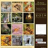Forest Creatures 2018: Kalender 2018 (Wonderful World)