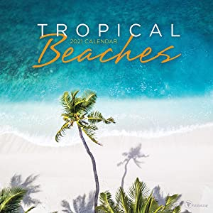 """TF PUBLISHING 2021 Tropical Beaches Monthly Wall Calendar - Contacts & Notes Page - Home or Office Planning/Organization - Premium Gloss Paper 12""""x12"""""""