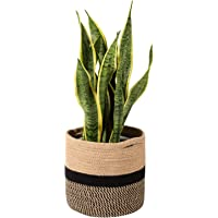 Amazon Best Sellers Best Planters