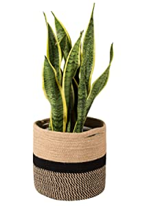"TIMEYARD Sturdy Jute Rope Plant Basket Modern Woven Basket for 10"" Flower Pot Floor Indoor Planters, 11"" x 11"" Storage Organizer Basket Rustic Home Decor, Black and Beige Stripes"