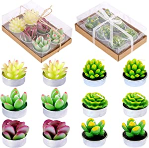 Glarks 12Pcs Cute Handmade Delicate Artificial Succulents Tealight Candles Set Gift Packaged for Birthday Party Valentine's Day Wedding Spa Home Decor and DIY Gift
