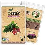 CERTIFIED NON-GMO SEEDS (Approx. 550) - Heirloom Radish Seeds - Cherry Belle Radish - UNTREATED, Non Hybrid - USA