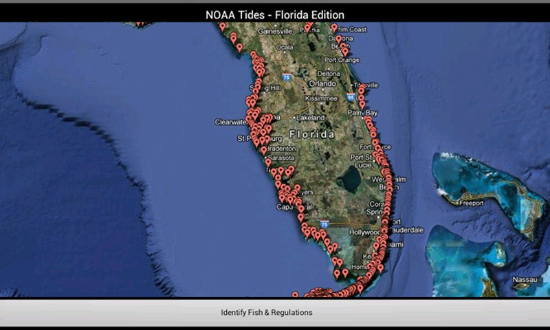 Tides florida edition by noaa with florida fishing for Florida fishing regs