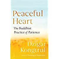 Peaceful Heart: The Buddhist Practice of Patience