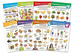 NewPath Learning 94-1120 My Plate - Food & Nutrition Bulletin Board Chart Set - Grades 1-4 - Set of 8