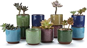 T4U 2.5 Inch Small Ceramic Succulent Planter Pot with Drainage Hole Set of 12, Ice Crack Glaze Porcelain Handicraft Plant Container Gift for Mom Sister Aunt Best for Home Office Desk Decoration