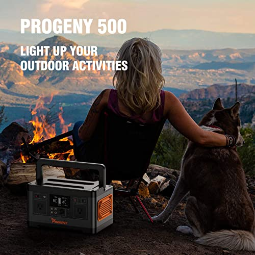 PROGENY 500W Generator Portable Power Station, 520Wh Lithium Battery with 110V AC Outlet, 4 DC 12V Ports, Type C QC Car port USB, Solar Generators for Camping CPAP Emergency Home Outdoor RV Van