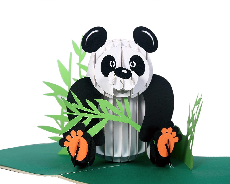 Amazon Com Cutpopup 3d Panda Paper Pop Up Greeting Card Cute Laser