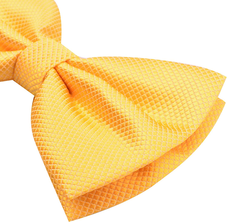 Alizeal Mens solido giallo giallo Pre Tie Pre Tied Bow Tie per gli sposi Bestman Bowtie