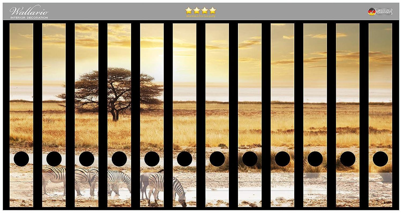Wallario Ordnerr/ücken Sticker Safari in Afrika eine Herde Zebras am Wasser in Premiumqualit/ät Gr/ö/ße 8 x 3,5 x 30 cm passend f/ür 8 schmale Ordnerr/ücken