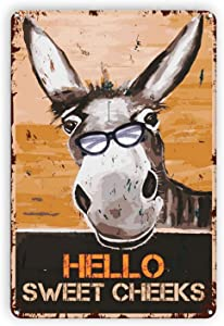 DZGlobal Funny Donkey Signs Wall Decor Vintage Hello Sweet Cheeks Donkey Tin Sign for Backyard Garage Man Cave Shed Office Craft Room Living Room