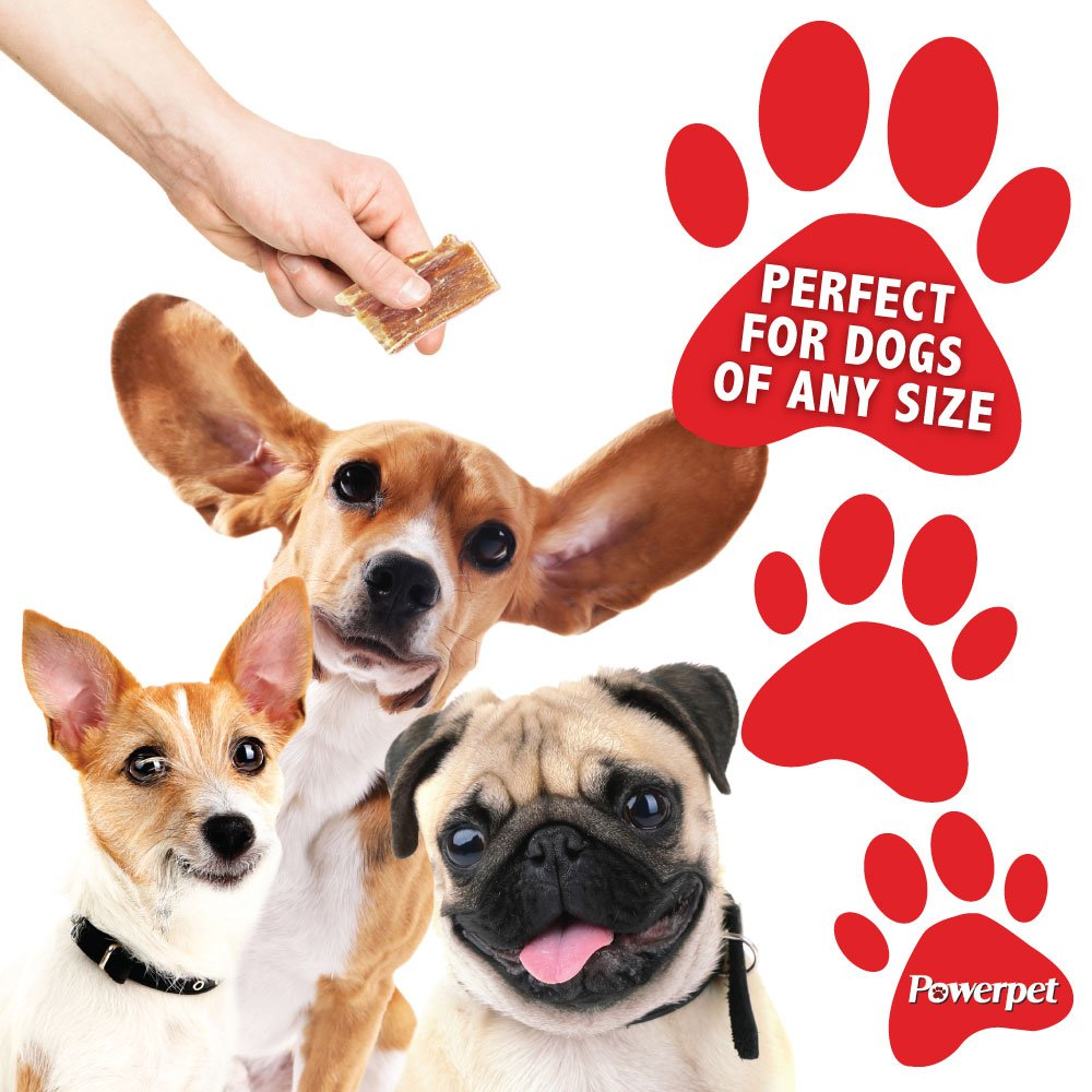 Powerpet: Beef Taffy Bites - Natural Dog Chew - 8 OZ Pack - Helps Improve Dental Hygiene - 100% Natural & Highly Digestible - Protein with Low Fat - Beef Jerky Dog Treat - Made from Beef Esophagus by Powerpet (Image #6)