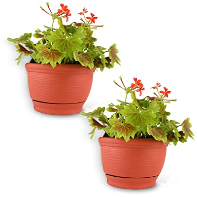 T4U Wall Hanging Planter Pots Outdoor Use Plastic 6 Inch Red Set of 2, Small Self Watering Wall Mounted Flower Plant Basket for Home Garden Porch Balcony Kitchen Wall Decoration Wedding Gift: Garden & Outdoor