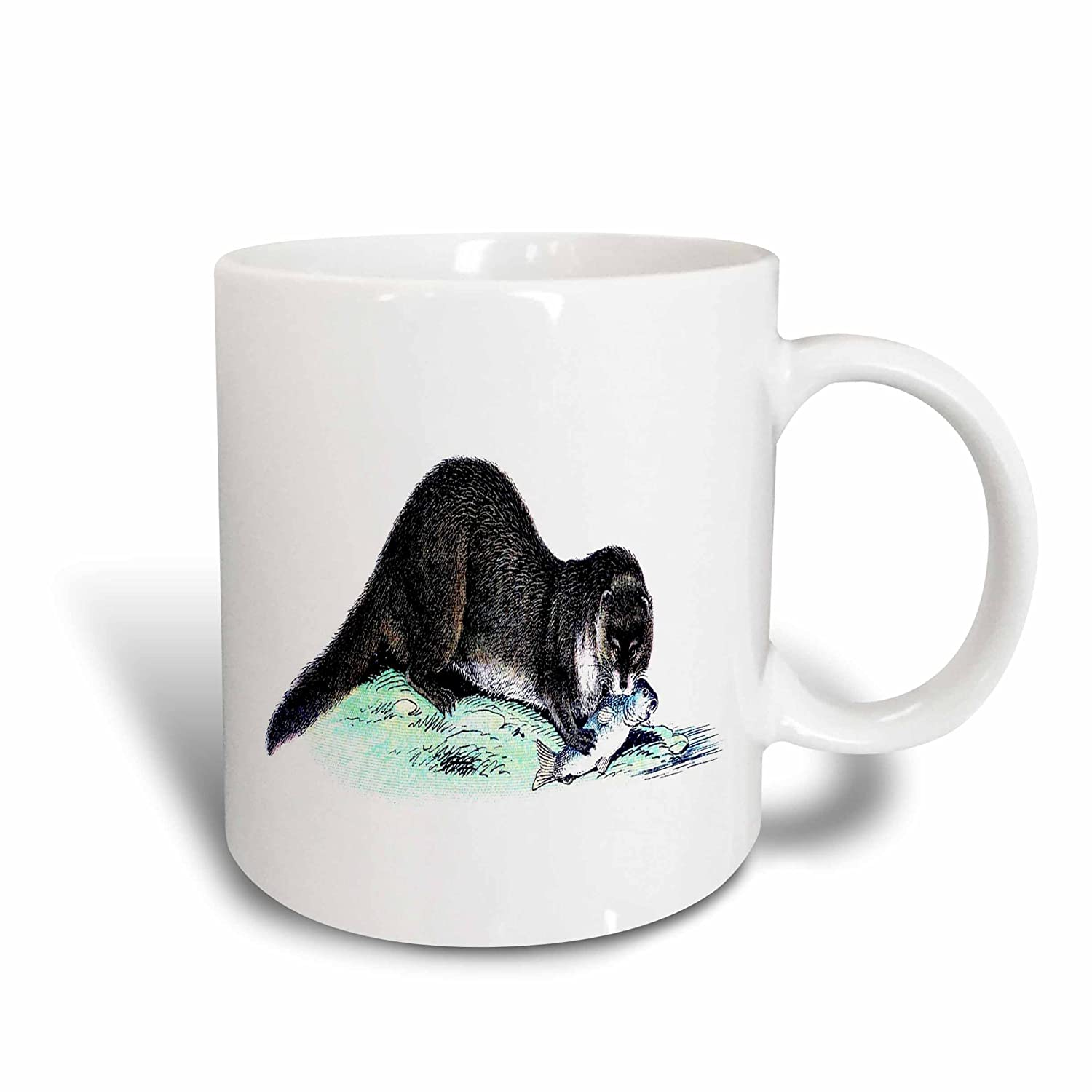 Buy 3drose Mug 44821 2 Vintage Otter With Fish Ceramic Mug 15 Ounce Online At Low Prices In India Amazon In