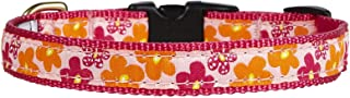 product image for Up Country Flower Power Collar - Medium