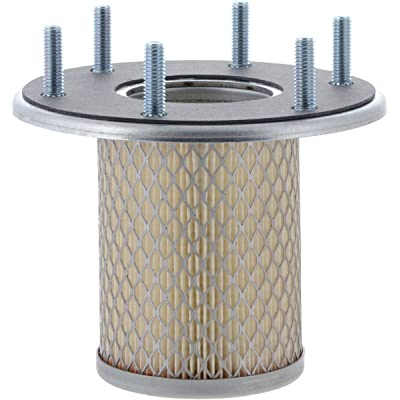 Luber-finer LAF2519 Heavy Duty Air Filter: Automotive