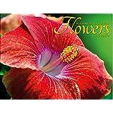 2019年 ハワイアンカレンダー フラワー オブ ハワイ