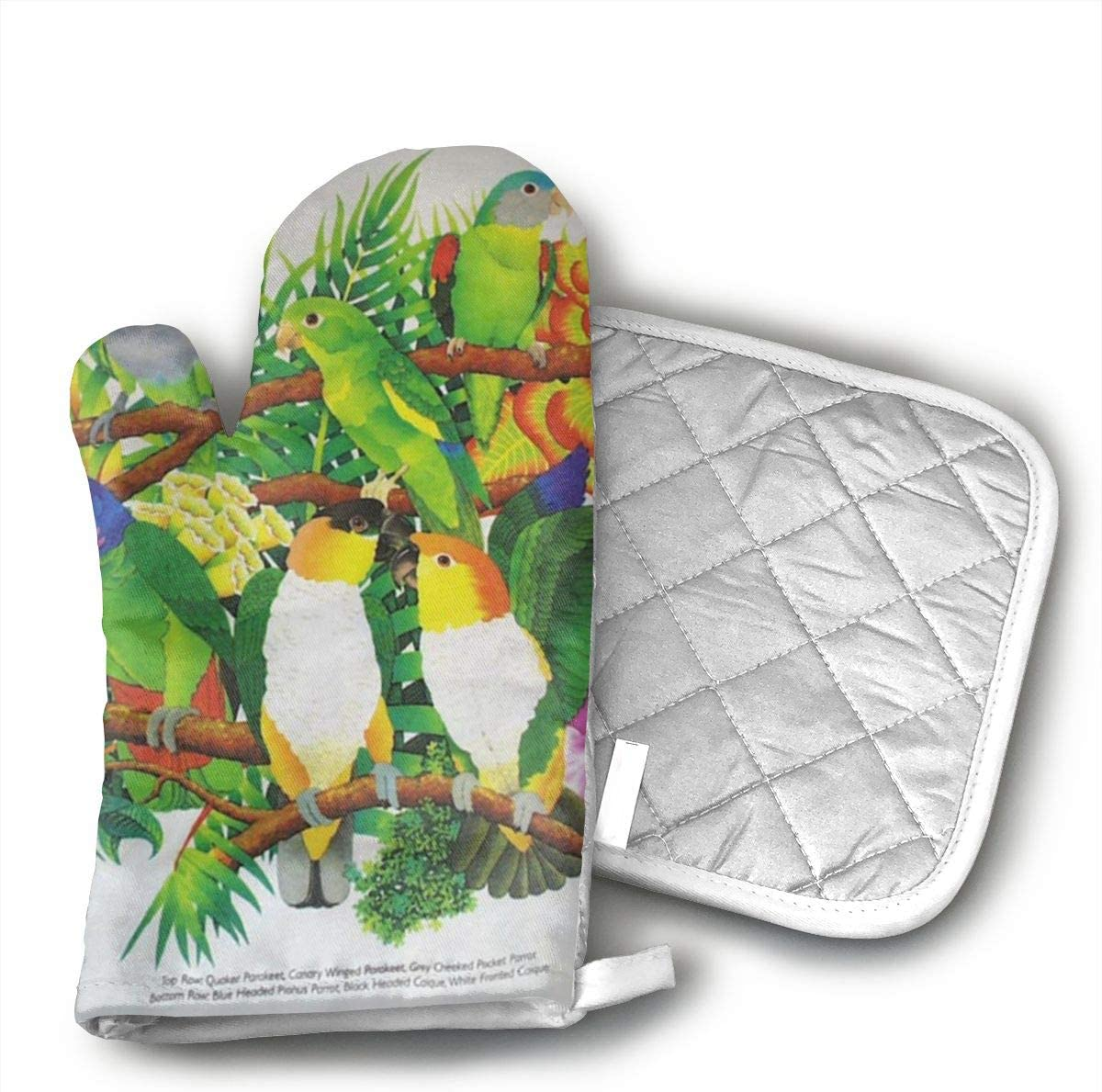 Ydsgjds Parrots Birds Oven Mitts and BBQ Gloves Pot Holders, Heat Resistant Mitts for Finger Hand Wrist Protection with Inner Lining, Kitchen Gloves for Grilling Machine Baking Grilling with Non-Slip