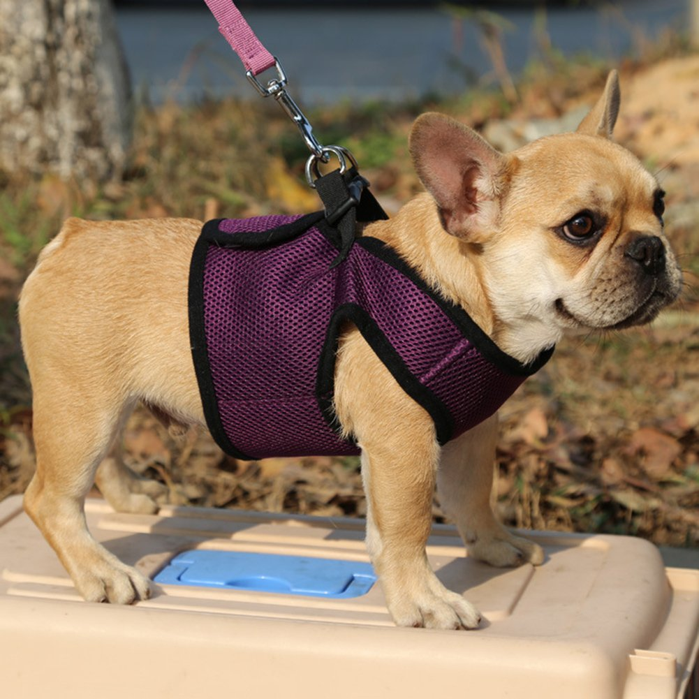Purple XL Purple XL Pet Vest Harness Breathable Soft Air Mesh Puppy Dog Vest Harness Super Breathable Mesh Inner Fabric Not Sultry VH-94302
