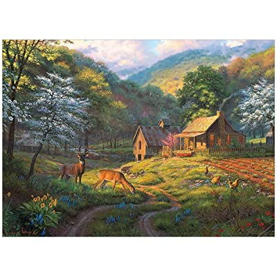 Cobblehill 80045 1000 pc Country Blessings Puzzle, Various: Toys & Games