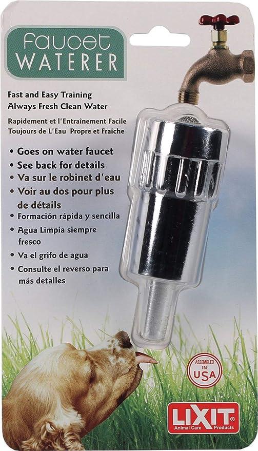 Amazon.com: Lixit - Agua dulce para perros de entrenamiento ...