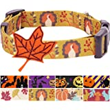 Blueberry Pet 8 Patterns Fall Halloween Thanksgiving Spirit Collection Designer Dog Collar with Decoration