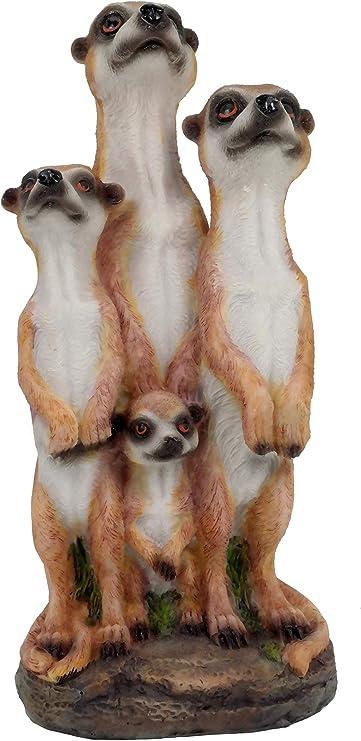 Familia de suricatos Figura Jardín Figura 20 cm: Amazon.es: Jardín